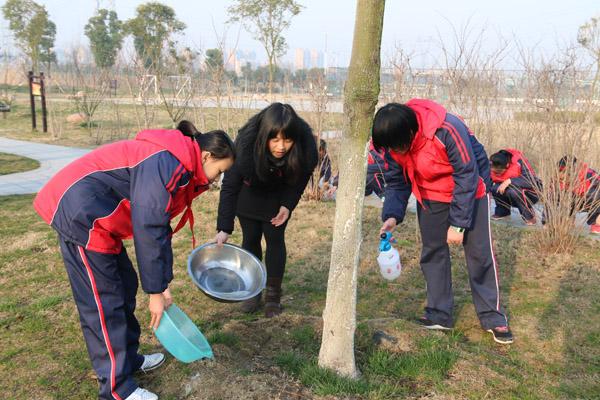 九龙湖校区开展植树节活动