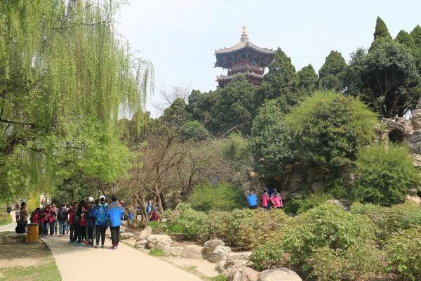 校服的颜色与这样的景色很是搭配-扬州树人学校图片